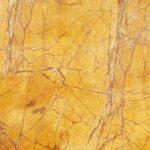 Rainforest Gold