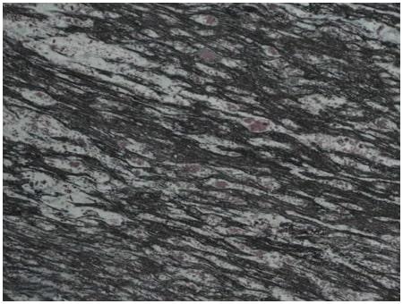 Amadeus Blue Granite Slab