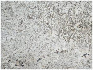 bainco antico indian natural stone